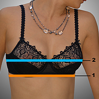 Proper Bra Fit Guide