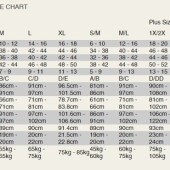 dreamgirl international size chart