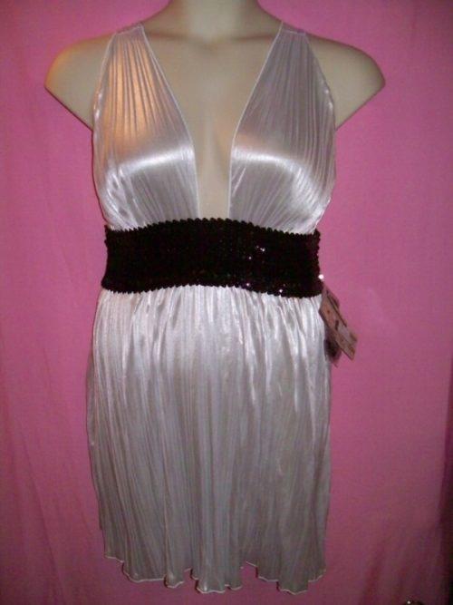 Dreamgirl_Metallic_Clubwear_Dress_dg5372
