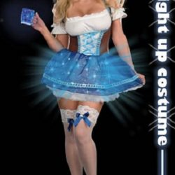 Dreamgirl_Heidi_Blue_Light_Costume_dg7488