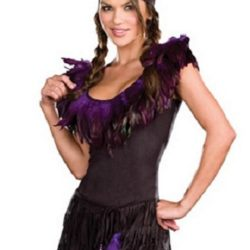 Dreamgirl_Pow_Wow_Wow_Indian_Costume_dg7588