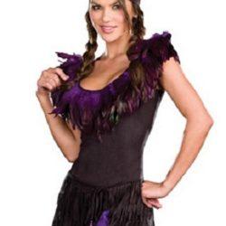 Dreamgirl_Pow_Wow_Wow_Indian_Costume_dg7588