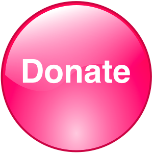 Button_Icon_Pink