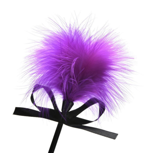 Tease Me Feather Tickler and Paddle feather bring fun back